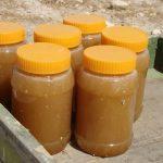مدیر جهاد کشاورزی شهرستان فراشبند خبر داد: تولید ۴۰۰ تن عسل در شهرستان فراشبند