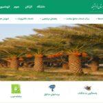 راه اندازی خدمت گفتگوی آنلاین بر روی صفحه وب سایت شبکه بهداشت و درمان فراشبند