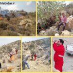 حدود ۵۰ هکتار از مراتع شهرستان فراشبند طعمه حریق شد
