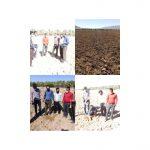 رزمایش نهضت جهش تولید بسیج جامعه کشاورزی در فراشبند برگزار شد