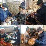 مراقبت از سالمندان پرخطر «حسین آباد» فراشبند در منزل در دوره همهگیری کرونا