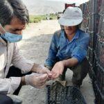 اجرای چهارمین مرحله بیماریابی و مراقبت مالاریا در فراشبند